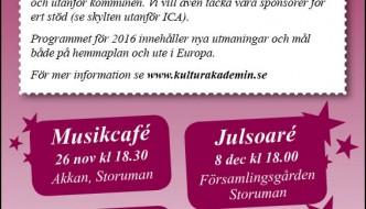 Julprogram 2015